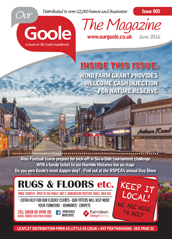 Our Goole